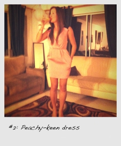 bcbg-rose-pleated-dress