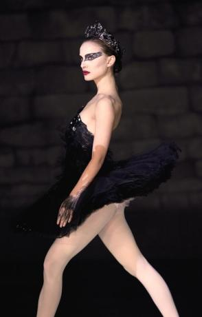 black-swan-costume-idea